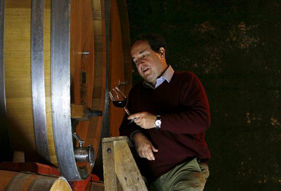 Cantine di tufo e grandi vini