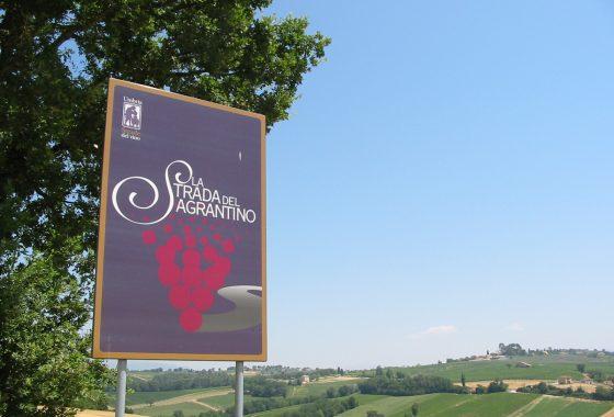 In Umbria, alla ricerca del vino sacro