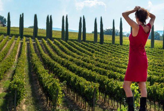 Ecco perché il prossimo vino della vostra cantina dovrebbe essere un Sagrantino di Montefalco