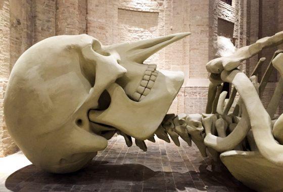 Calamita Cosmica, il grande scheletro nella chiesa di Foligno
