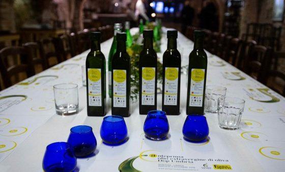 Olio extravergine di oliva. 10 cose da sapere sulla DOP Umbria