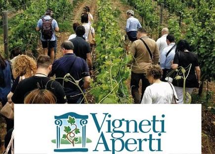 Vigneti Aperti in Umbria